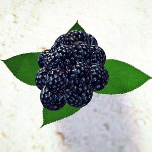 blackberry ready obj free