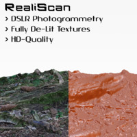 realiscan photogrammetry old branch 3d model