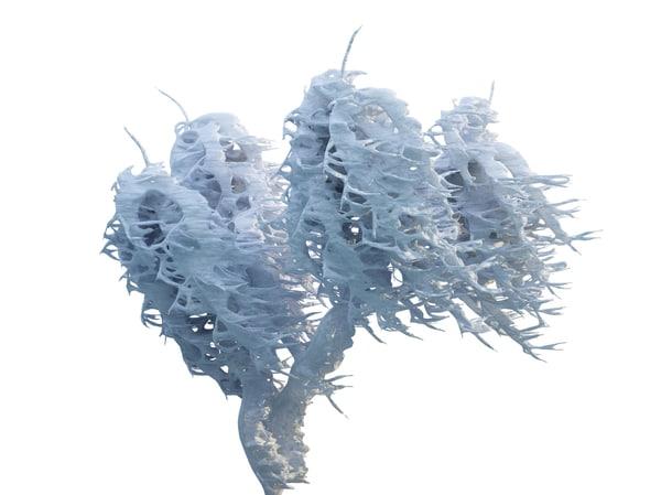 frozen tree hd 3d model