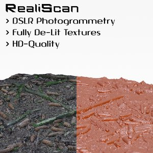 free realiscan photogrammetry sample scan 3d model