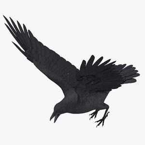 3d model crow 02