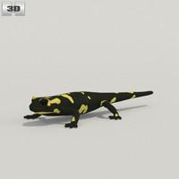 3d salamander spotted model