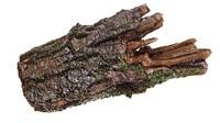 3d model branch rotten wood