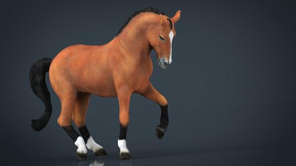 dressage horse max