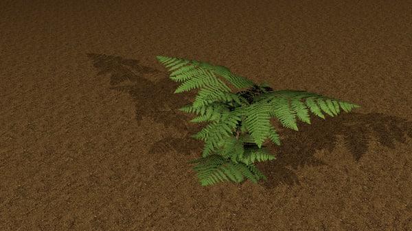 3d x bush