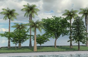 3d trees pine palm model