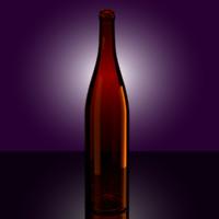 brown beer bottle 3d 3ds