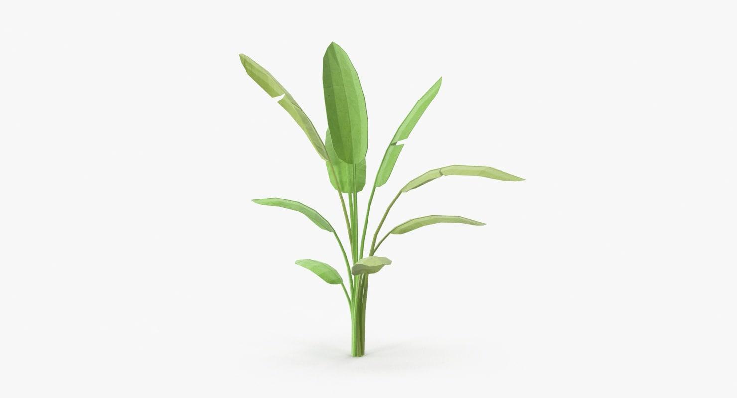 tropical plant 01 3d model
