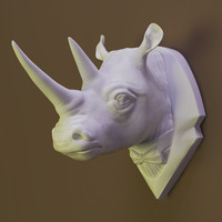 Rhino Decor to the wall