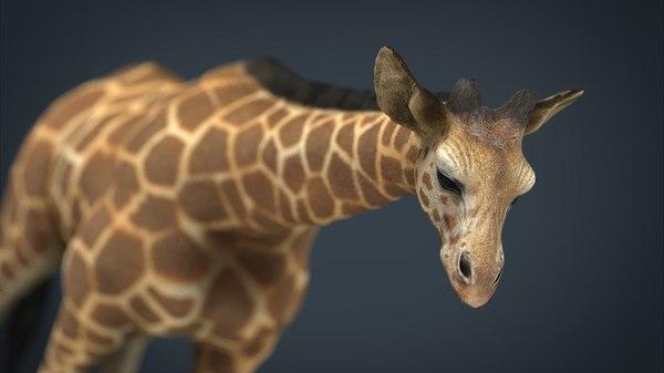 3d model giraffe stl