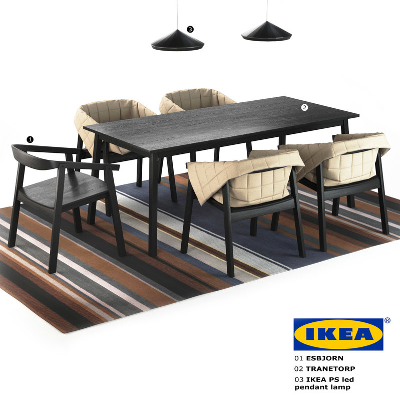 ikea chair esbjorn table 3d model