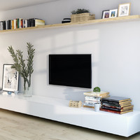 the TV Cabinet