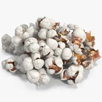 popcorn corn pop max