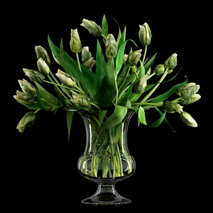 3d realistic green parrot tulips