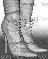 boots obj