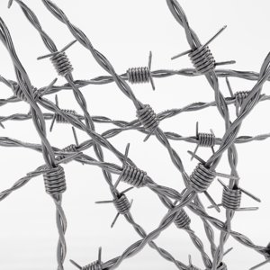 3d barb wire