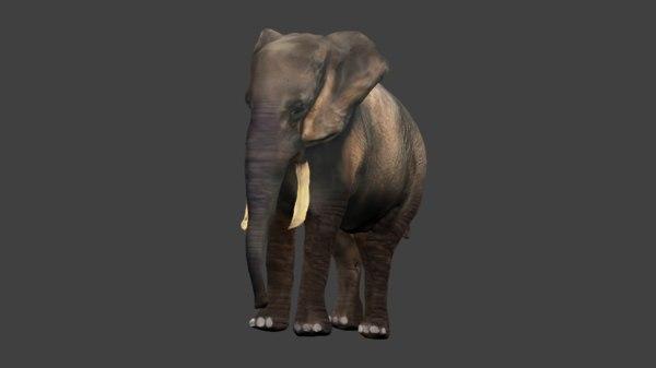 african elephant obj free