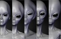 Realistic Aliens Sculpts Bundle 1