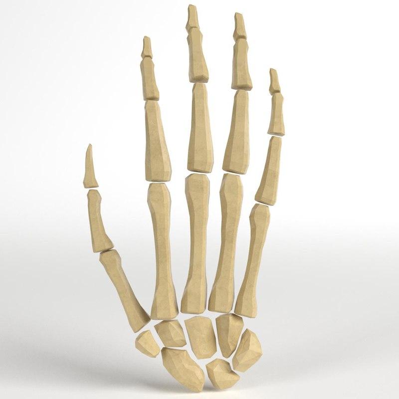 human hand bones 3d 3ds