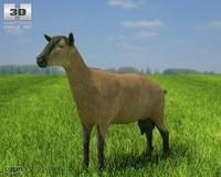 max goat alpine