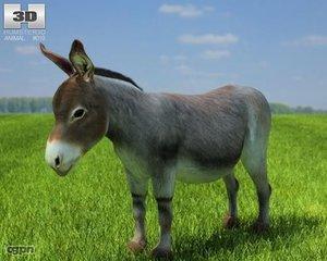 donkey obj