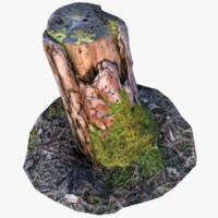 3d realistic pine stump