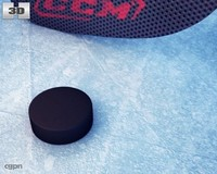 3d hockey puck stick