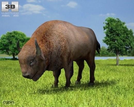 3ds bison bonasus european