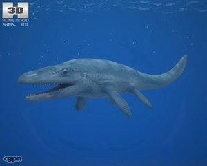 mosasaurus hoffmannii n 3d model