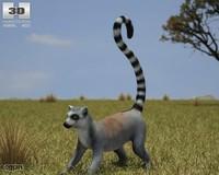 3d catta lemur ring