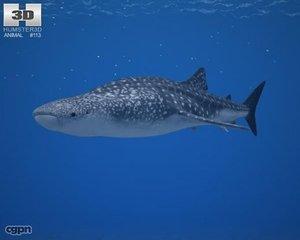 3d animals marine model