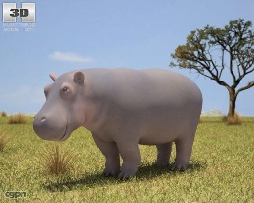 amphibius hippo hippopotamus 3d model