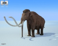 mammoth mammut mammuthus 3d model