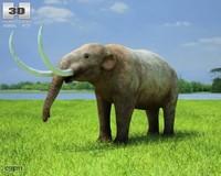 american americanum mammut 3d model