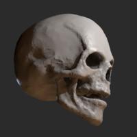skull sculpt blend