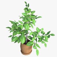 3d flower pot model