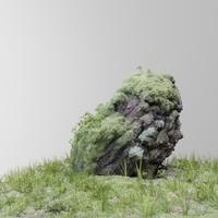 max scanned tree stump gras