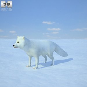 3ds arctic fox
