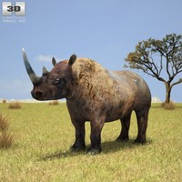 black rhinoceros 3ds