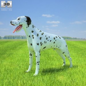 3d dalmatian model