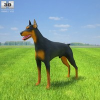 doberman pinscher 3ds