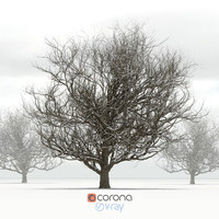 3d oak snow tree