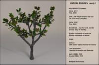 fantasy tree 08 obj