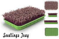 3d seedling tray