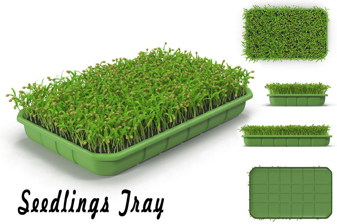 max seedling tray