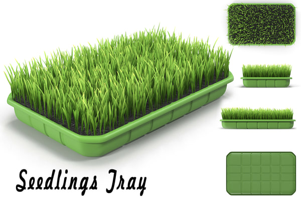 seedling tray max