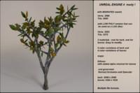 fantasy tree 11 3d fbx