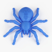 3d scarry spider print