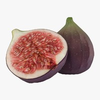 realistic figs 3d model