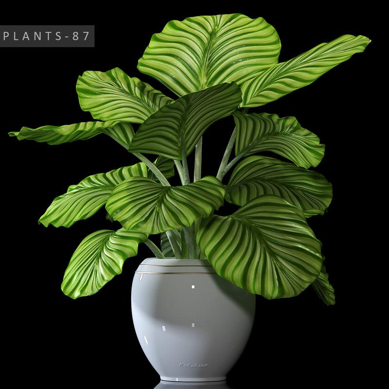 max plant 87